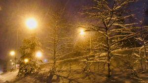 Lumisadetta.