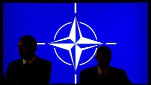 Naton logo heijastettuna seinään.
