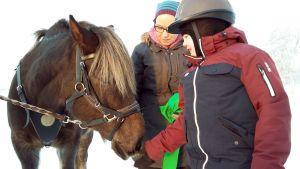 Einari Purra tervehtii terapiahevosta Niiloa. Ratsastusterapeutti Lena Lassila apuna.