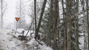 Onnettomuuden jälkiä tien varressa talvella: kolhiutunut sivukaide, kaatuneita puita