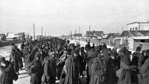 Sotavangiksi joutuneita saksalaisia Stalingradin taistelun jälkeen.