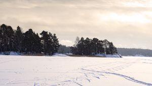 Talvinen merimaisema jossa jäällä hiihtäjien jälkiä.