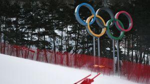 Tuuli Pyeongchang