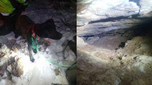 Kuvakollaasi, jossa vierekkäin kuvat patterdalenterrieristä ja luolasta.