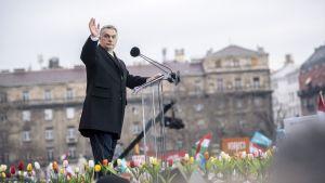 Viktor Orbán pitää aukiolla puhetta