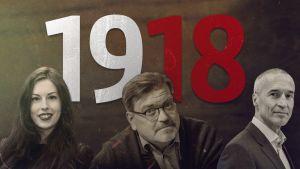 1918-kolumnikokonaisuus