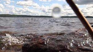 Aurinkoinen järvimaisema