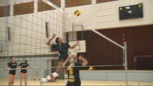 Pieksämäki Volley harjoittelee.