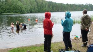 Aikuiset katsovat lasten uimakoulua.