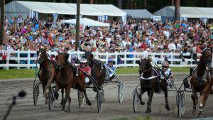 Ravihevosia Mikkelin kuninkuusraveissa St.Michel-lähdössä.