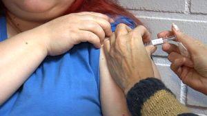 Kausi-influenssarokotuksia on otettu viime vuosia vähemmän.