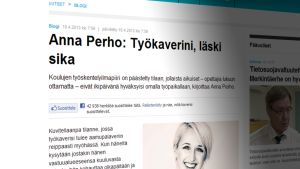 Kuvakaappaus Yle Uutisten verkkosivuilta.