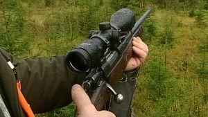 Bissu. Kivääri metsästäjän käsissä. Kiväärissä kiikaritähtäin.