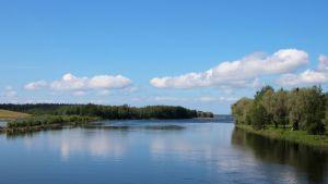 Luonnonrauhaa Pielisjoen varrella