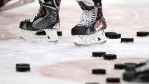 Jääkiekko yleiskuva kuvitus
