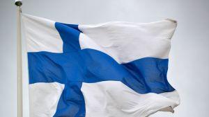Suomen lippu liehuu tangossa eduskuntavaalien varsinaisena äänestyspäivänä 2015.