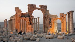 Palmyran rauniokaupunki marraskuussa 2010.