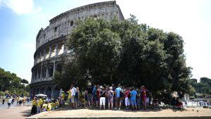 Colosseum on Rooman suosituimpia nähtävyyksiä.
