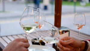 viinilaseja kilistetään