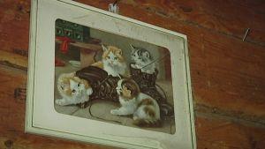 Kissataulu seinällä.
