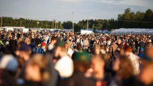 Suviseuravieraita kentällä Torniossa kesäkuussa 2016.