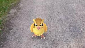 Pokemon GO -pelin kuvaa.