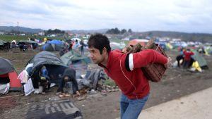 Mies kantaa polttopuita pakolaisleirillä lähellä Idomenin kylää.