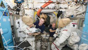 Astronautit Jeff Williams ja Kate Rubins valmistautumassa kansainvälisellä avaruusasemalla avaruuskävelyyn.