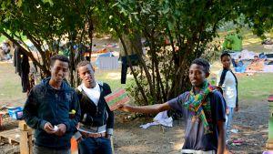 turvapaikanhakijoita puistossa