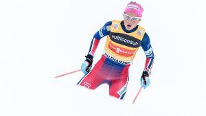 Therese Johaug joulukuussa 2015, Lillehammerissa