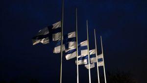 Suomen liput puolitangossa