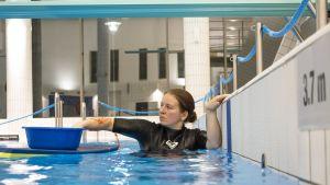 Laitoshuoltaja työssään puhdistaa uima-altaan reunuksia