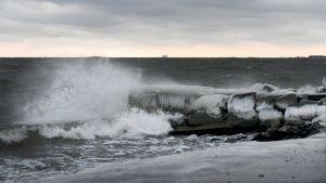 Aallot murtuvat rantaan Helsingin Hernesaaren kärjessä.