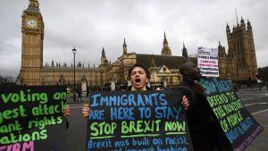 Mielenosoittajia parlamenttitalon edessä.