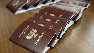 Donetskin ns. kansantasavallan myöntämiä passeja.