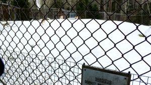 Varoituskyltti ja verkkoaitaa Ähtärin eläinpuiston susiaitauksella.