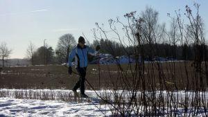 Hiihtäjä varsin vähälumisen sänkipellon laidalla Haltialan tilan maisemissa Helsingissä 8. helmikuuta.