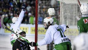 Veiterän Tuukka Loikkanen (71) tuulettaa Akilleksen maalivahdin Magnus Gustafssonin selän taakse tekemäänsä avausmaalia jääpallon Bandyliigan loppuottelussa Akilles - Veiterä Porvoossa 11. maaliskuuta 2017.