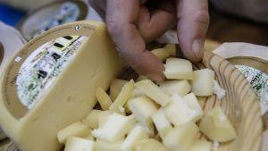 Miehen käsi poimii juustonpalaa vadilta, johon on kuutioitu puolikas juustokiekosta.