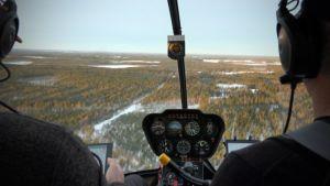 Kuva metsäpeurojen laskentaa tekevän helikopterin ohjaamosta avautuvaan Lappajärven metsäiseen maastoon.