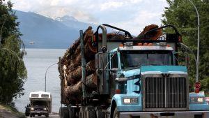 Kuorma-auto kuljettaa tukkilastia. Taustalla näkyy vuoristoista maisemaa ja järveä.
