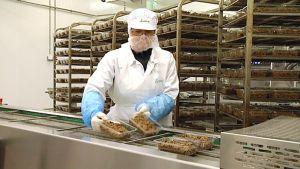 Härkäpavusta valmistetun Härkis- tuotteen pakkausta Kauhavalla.