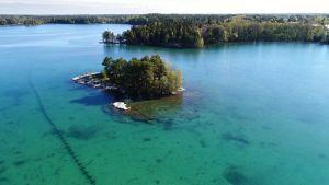 Kemiallisesti puhdistetun Littoistenjärven vesi on kirkasta ja turkoosia.