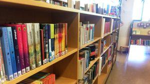 kirjaston kirjoja hyllyssä