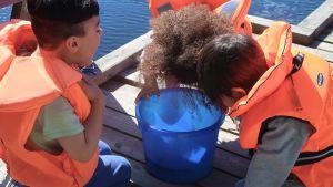 Lapsia tutkimassa saalista