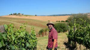 Paradiso di Frassina viinitilan työntekijä.