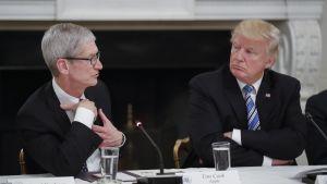 Cook ja Trump istuvat pöydän ääressä.