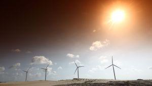 Tuulivoima Afrikassa aavikolla.