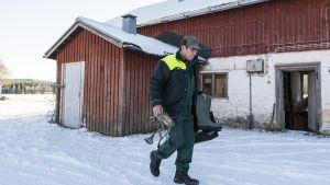Mauri Arffman kävelee ulkona kantaen lypsyjakkaraa ja saappaita.