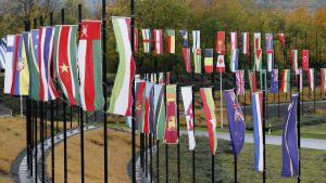 Lippuja Bonnin ilmastokokouksen tapahtumapaikan edustalla.